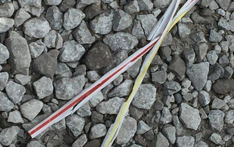 Calling all Pelhamites: banning plastic straws