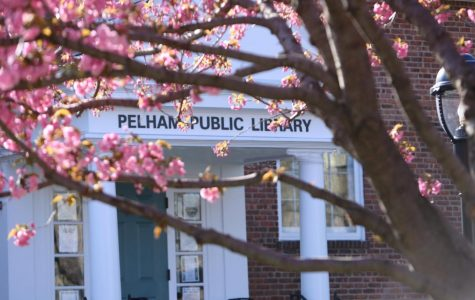 Town of Pelham Public Library programs