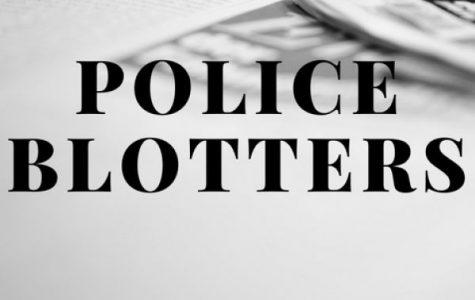 Village of Pelham police blotter: Nov. 1-8