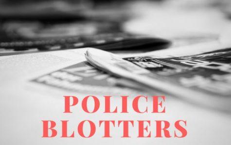 Village of Pelham police blotter: June 10-11