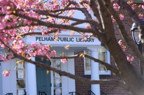 Pelham Public Library prepares for staged reopening, increases virtual programming