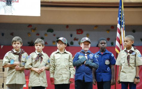 Six Pelham Pack 8 Cubs receive Supernova STEM award in a first for pack