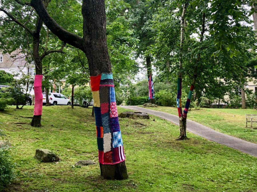%22Yarn+Bombing+Wolfs+Lane+Park%22+by+Melissa+Maddonni+Haims.