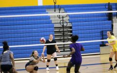 Pelham girls' volleyball clinches league title with win against Harrison