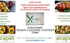 Come try the new at EcoPel's vegan cook off on Nov. 9