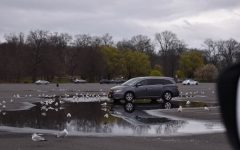 Foto Feature: Orchard Beach and City Island at a distancing