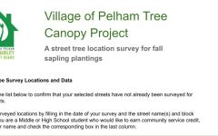 Pelham sustainability board seeks volunteers to site locations for new trees