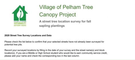 Pelham Sustainability Advisory Board holds meeting to educate volunteers on its Canopy Project