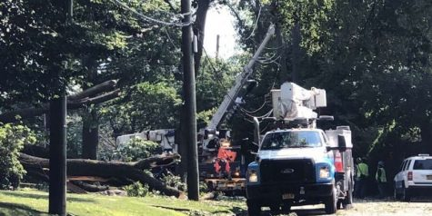 Snapshot: Tree topples in Pelham Manor, damaging transformer and causing power outage