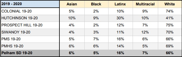 Racial break down of each school