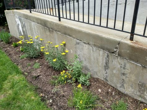 The new sensory garden at Pelham Public Library.
