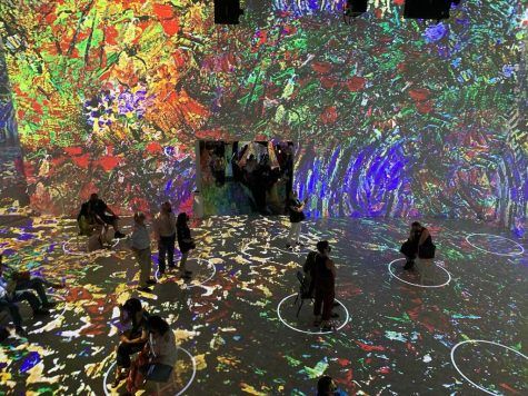 Review: Immersive van Gogh is fascinating approach to viewing art